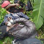Anglophone Cameroon: Cri de Coeur
